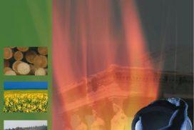 Die Strategie der Erneuerung: Biomasse